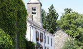Trail Walk Wellin - Sohier-Visite du village - Photo 1