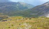 Trail Walk SEEZ - Lancebranlette - Photo 1