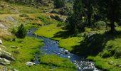 Trail Walk PORTE-PUYMORENS - Etang de Lanous - Photo 2