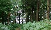 Randonnée Marche Unknown - poteau hêtre des princes 2 - Photo 11