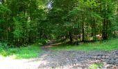 Randonnée Marche LONGPONT - en forêt de Retz_39_Longpont_Villers-Cotterets_AR - Photo 154