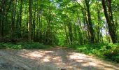 Randonnée Marche LONGPONT - en forêt de Retz_39_Longpont_Villers-Cotterets_AR - Photo 140