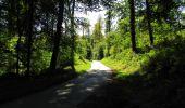 Randonnée Marche LONGPONT - en forêt de Retz_39_Longpont_Villers-Cotterets_AR - Photo 172