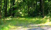 Randonnée Marche LONGPONT - en forêt de Retz_39_Longpont_Villers-Cotterets_AR - Photo 215