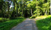 Randonnée Marche LONGPONT - en forêt de Retz_39_Longpont_Villers-Cotterets_AR - Photo 68