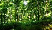 Randonnée Marche LONGPONT - en forêt de Retz_39_Longpont_Villers-Cotterets_AR - Photo 46