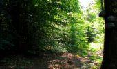 Randonnée Marche LONGPONT - en forêt de Retz_39_Longpont_Villers-Cotterets_AR - Photo 195
