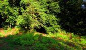 Randonnée Marche LONGPONT - en forêt de Retz_39_Longpont_Villers-Cotterets_AR - Photo 9