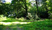 Randonnée Marche LONGPONT - en forêt de Retz_39_Longpont_Villers-Cotterets_AR - Photo 192