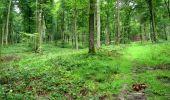 Randonnée Marche LONGPONT - en forêt de Retz_39_Longpont_Villers-Cotterets_AR - Photo 10