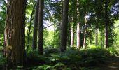 Randonnée Marche LONGPONT - en forêt de Retz_39_Longpont_Villers-Cotterets_AR - Photo 97