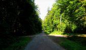 Randonnée Marche LONGPONT - en forêt de Retz_39_Longpont_Villers-Cotterets_AR - Photo 39