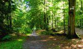 Randonnée Marche LONGPONT - en forêt de Retz_39_Longpont_Villers-Cotterets_AR - Photo 229
