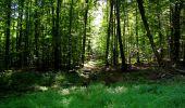 Randonnée Marche LONGPONT - en forêt de Retz_39_Longpont_Villers-Cotterets_AR - Photo 144