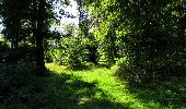 Randonnée Marche LONGPONT - en forêt de Retz_39_Longpont_Villers-Cotterets_AR - Photo 167