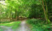Randonnée Marche LONGPONT - en forêt de Retz_39_Longpont_Villers-Cotterets_AR - Photo 133