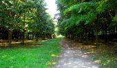 Randonnée Marche LONGPONT - en forêt de Retz_39_Longpont_Villers-Cotterets_AR - Photo 119