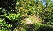 Randonnée Marche LONGPONT - en forêt de Retz_39_Longpont_Villers-Cotterets_AR - Photo 206