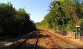 Randonnée Marche LONGPONT - en forêt de Retz_39_Longpont_Villers-Cotterets_AR - Photo 254