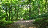 Randonnée Marche LONGPONT - en forêt de Retz_39_Longpont_Villers-Cotterets_AR - Photo 137