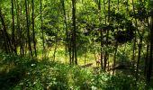 Randonnée Marche LONGPONT - en forêt de Retz_39_Longpont_Villers-Cotterets_AR - Photo 244