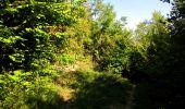 Randonnée Marche LONGPONT - en forêt de Retz_39_Longpont_Villers-Cotterets_AR - Photo 205
