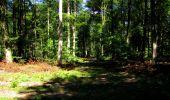 Randonnée Marche LONGPONT - en forêt de Retz_39_Longpont_Villers-Cotterets_AR - Photo 143