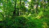 Randonnée Marche LONGPONT - en forêt de Retz_39_Longpont_Villers-Cotterets_AR - Photo 49