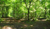 Randonnée Marche LONGPONT - en forêt de Retz_39_Longpont_Villers-Cotterets_AR - Photo 219