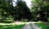 Randonnée Marche LONGPONT - en forêt de Retz_39_Longpont_Villers-Cotterets_AR - Photo 184