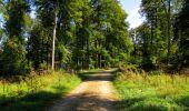 Randonnée Marche LONGPONT - en forêt de Retz_39_Longpont_Villers-Cotterets_AR - Photo 166