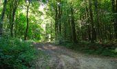 Randonnée Marche LONGPONT - en forêt de Retz_39_Longpont_Villers-Cotterets_AR - Photo 139