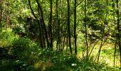Randonnée Marche LONGPONT - en forêt de Retz_39_Longpont_Villers-Cotterets_AR - Photo 243