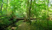 Randonnée Marche LONGPONT - en forêt de Retz_39_Longpont_Villers-Cotterets_AR - Photo 247