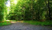 Randonnée Marche LONGPONT - en forêt de Retz_39_Longpont_Villers-Cotterets_AR - Photo 55