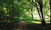 Randonnée Marche LONGPONT - en forêt de Retz_39_Longpont_Villers-Cotterets_AR - Photo 136