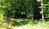 Randonnée Marche LONGPONT - en forêt de Retz_39_Longpont_Villers-Cotterets_AR - Photo 231