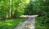 Randonnée Marche LONGPONT - en forêt de Retz_39_Longpont_Villers-Cotterets_AR - Photo 149