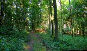 Randonnée Marche LONGPONT - en forêt de Retz_39_Longpont_Villers-Cotterets_AR - Photo 14