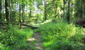 Randonnée Marche LONGPONT - en forêt de Retz_39_Longpont_Villers-Cotterets_AR - Photo 255