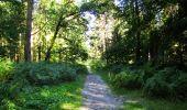 Randonnée Marche LONGPONT - en forêt de Retz_39_Longpont_Villers-Cotterets_AR - Photo 228