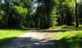 Randonnée Marche LONGPONT - en forêt de Retz_39_Longpont_Villers-Cotterets_AR - Photo 188