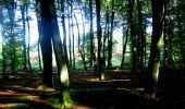 Randonnée Marche LONGPONT - en forêt de Retz_39_Longpont_Villers-Cotterets_AR - Photo 15