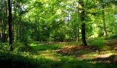 Randonnée Marche LONGPONT - en forêt de Retz_39_Longpont_Villers-Cotterets_AR - Photo 19
