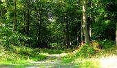 Randonnée Marche LONGPONT - en forêt de Retz_39_Longpont_Villers-Cotterets_AR - Photo 65
