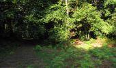 Randonnée Marche LONGPONT - en forêt de Retz_39_Longpont_Villers-Cotterets_AR - Photo 8