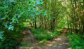 Randonnée Marche LONGPONT - en forêt de Retz_39_Longpont_Villers-Cotterets_AR - Photo 161