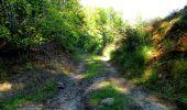 Randonnée Marche LONGPONT - en forêt de Retz_39_Longpont_Villers-Cotterets_AR - Photo 163