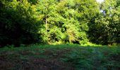 Randonnée Marche LONGPONT - en forêt de Retz_39_Longpont_Villers-Cotterets_AR - Photo 5