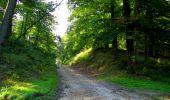 Randonnée Marche LONGPONT - en forêt de Retz_39_Longpont_Villers-Cotterets_AR - Photo 27